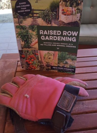 Book cover of Raised Row Gardening
