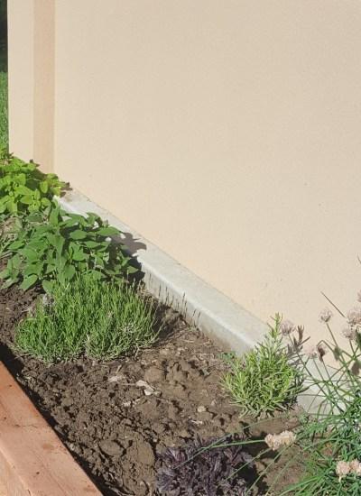 Concrete planter with chives, basil, rosemary, lavender, pineapple sage, lemon grass,'lemon thyme, lemon balm
