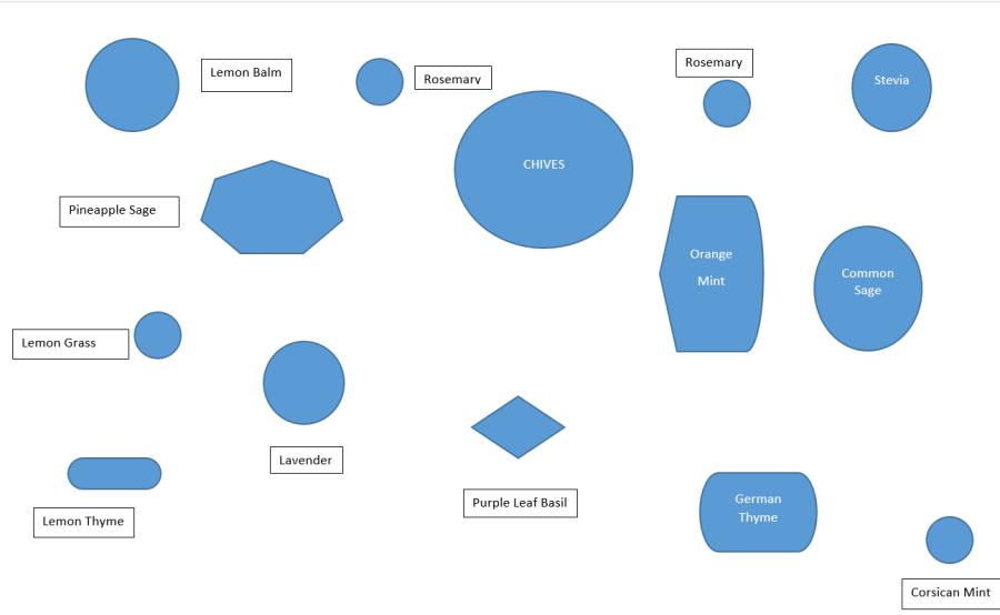 Diagram of new kitchen herb garden