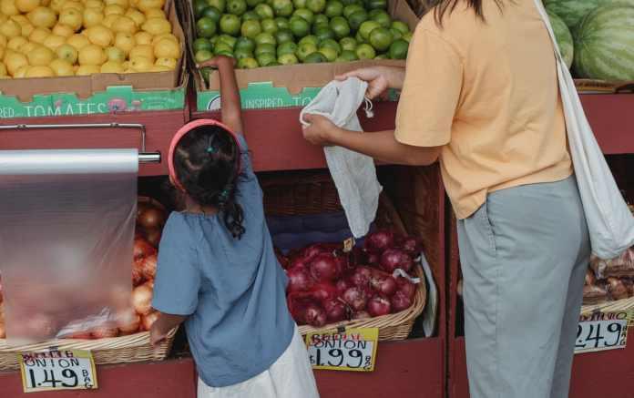 De acordo com os dados do Ministério da Economia, 280 mil empresas brasileiras oferecem vale-alimentação para parte de seus trabalhadores. Foto de Kamaji Ogino no Pexels)