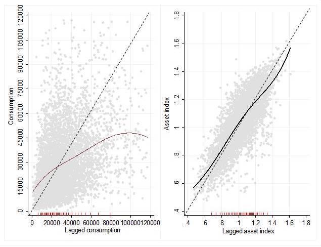 Figure by Adamon Mukasa. Semi-parametric penalized spline regression estimation: Consumption and asset dynamics.