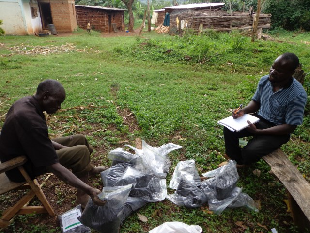 Pilot experimental auction for fertilizers in Teso region of Kenya, July, 2015. Photo by David Murphy.