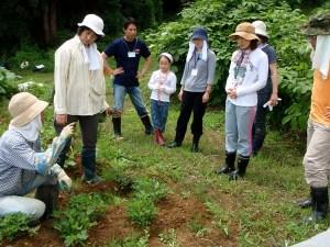 畑では参加者が祐子さんの説明に興味津々。