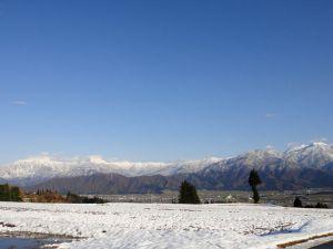イロハ田んぼも雪化粧(22日14時半頃撮影)。里には雪は積もっていませんでした。