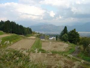 栃窪は標高500メートル前後の斜面に棚田が連続しています