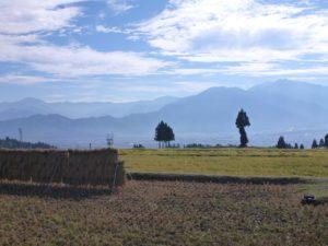 イロハ田んぼからの光景。魚沼盆地をはさんで2,000m前後の山々が連なります。