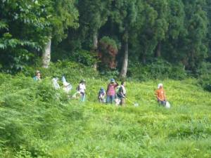 集落近くでの観察活動。トンボやバッタが飛び跳ね、アケビやコクワの実を観察出来ました。