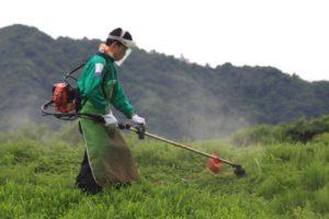 地元の高校生も初めての草刈りアートに挑戦!