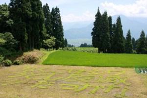 優勝した笛木常信さんの作品。「こんな減反、しとうはなかった」と休耕田に描いたメッセージは強烈だ。