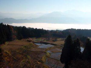 栃窪の棚田の一画。