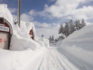 道路脇の雪の壁は3メートルほどになっています。写真は、1月31日11時40分頃。ひとときの晴れ間が久々に広がりました。