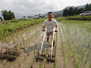 「くるま」と呼ばれる道具を使っての草取りもしました。
