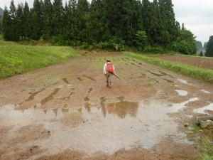 一袋分の肥料がつまった背中の赤いバック。下から出ている筒から肥料が出てきます。