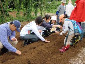 「どうやってまこうか?」穴を掘っては埋めまた掘って。穴に入れた種をまたとり出してみたり…おいしい大根を収穫する姿だけを思い描きながら、種をまきます。