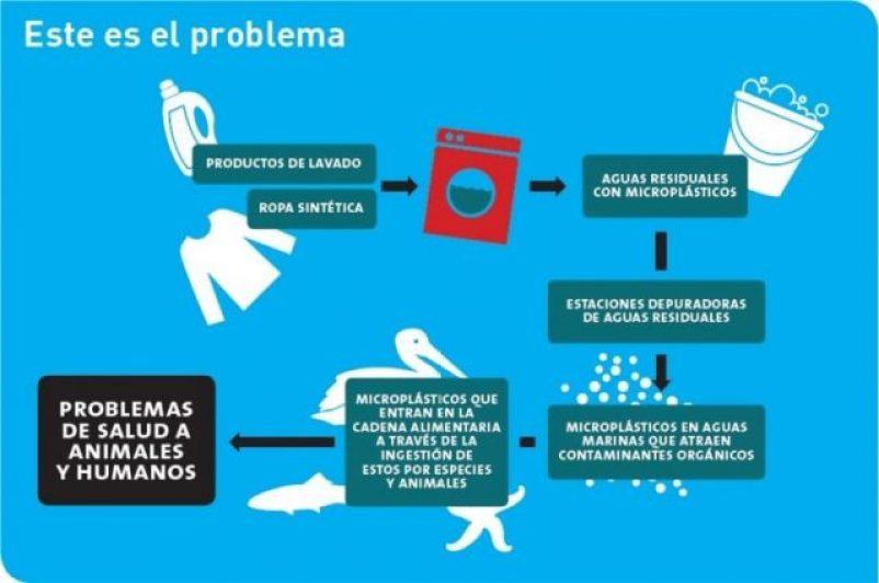 microfibras, contaminación, océanos, mares, alimento, peces