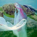 ¿Es el fin de los pitillos, cubiertos y platos plásticos en Europa?