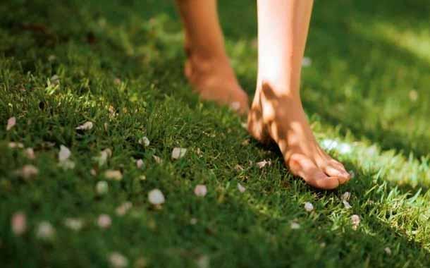 Grounding, salud, sueño, estrés, césped