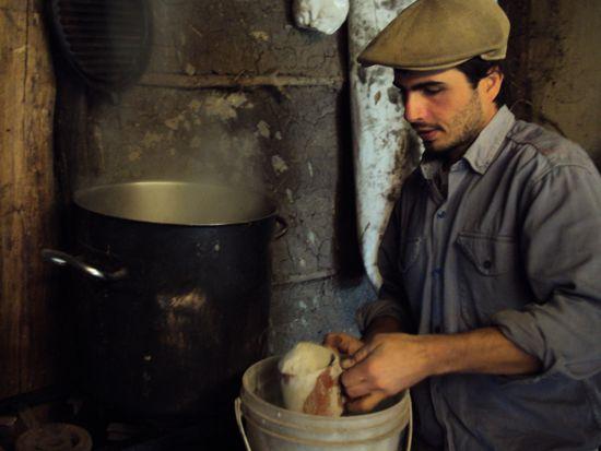 agricultura, orgánico, agroquímicos, harina, Colucci