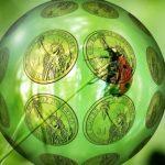 La industrialización de la Bioeconomía plantea riesgos para el clima, el medio ambiente y las personas