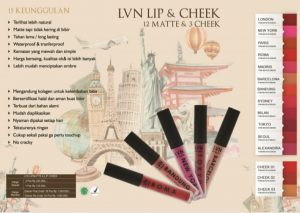 lvn skin care series lipmatte