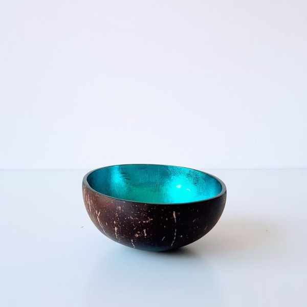 Coconut Bowl Coloured Blue
