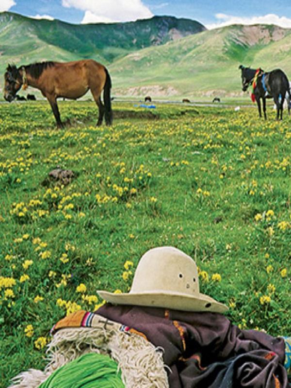 La frágil ecología del Tíbet