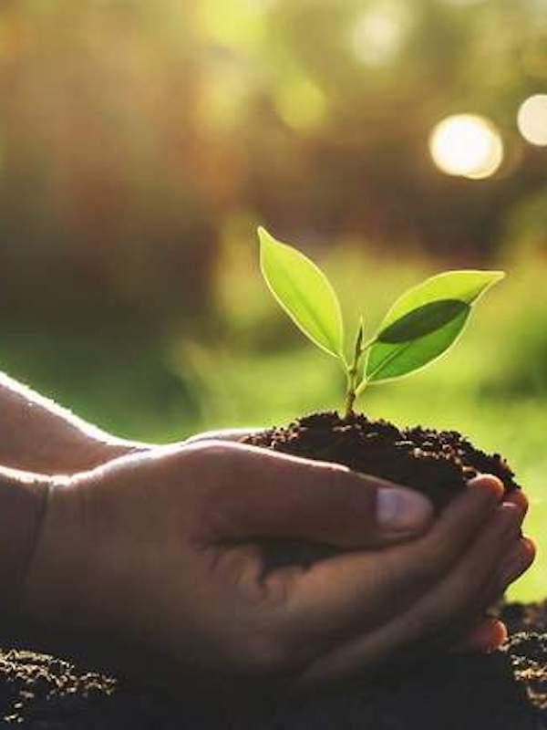 España impulsa la agenda ambiental
