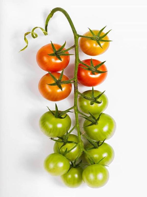 Todas las claves de los productos ecológicos y los alimentos 'bio' en España