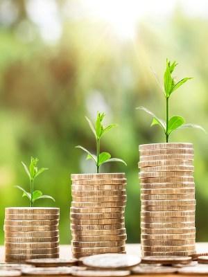 La 'economía verde' de este siglo