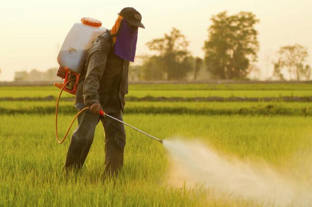 Pesticidas: cada vez más tóxicos