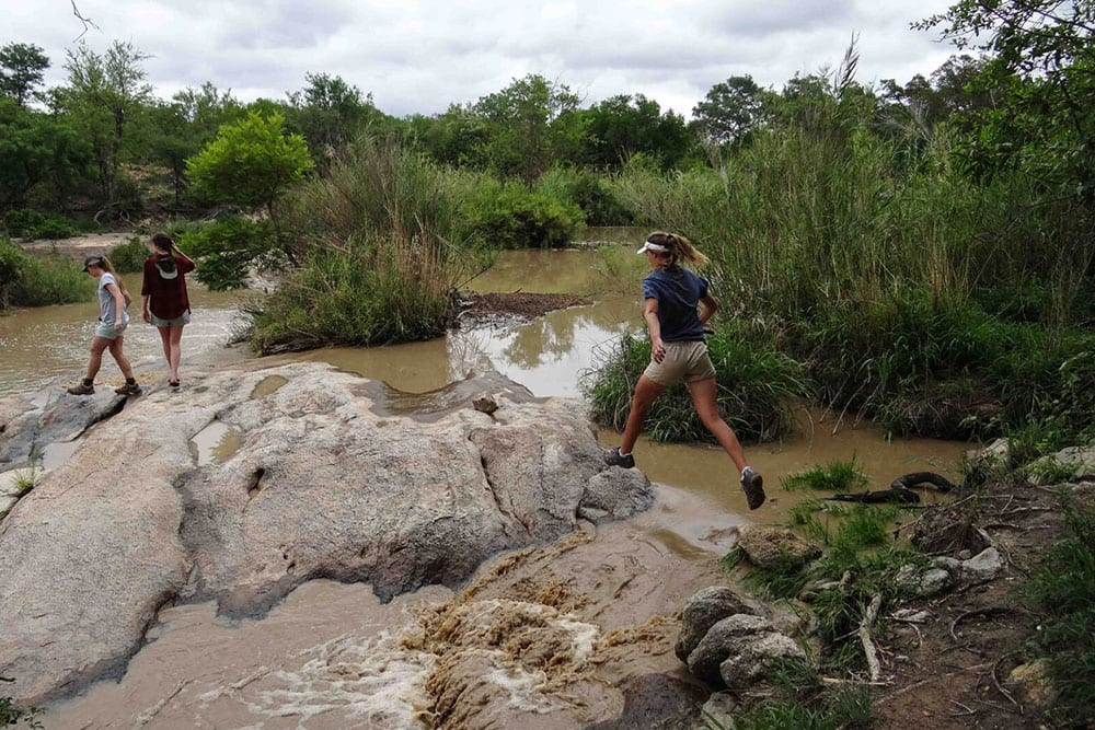 matrics-ecoquest-ecotraining-karongwe-bush-rage