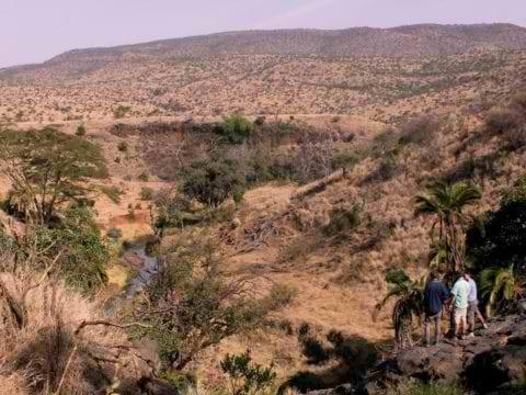 Borana Conservancy Landscape