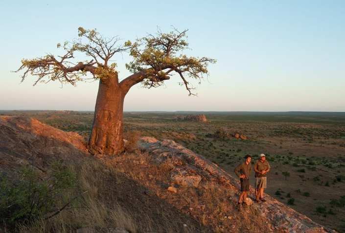 EcoTraining Mashatu Camp Botswana 001