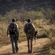 EcoTraining Trails