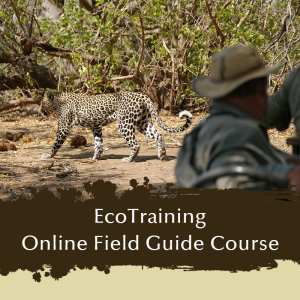 EcoTraining Online Field Guide