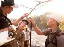 Game Ranger vs Safari/Field Guide - Ecotraining E Learning