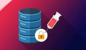 Ethical Hacking SQL Injection Attack Free Course