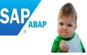 Abap Coding For Beginners With Tricks and Examples