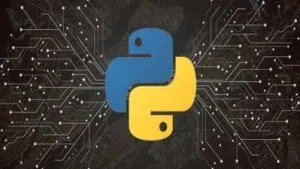 Supercharged Web Scraping with Asyncio and Python Free Course