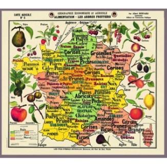Carte de géographie Deyrolles