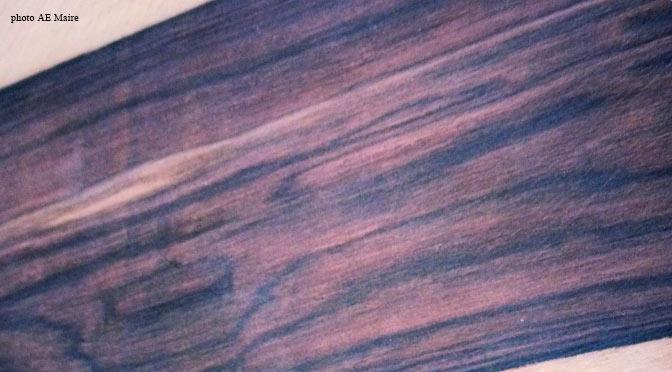 blog-bois-de-violette-ecoutelebois