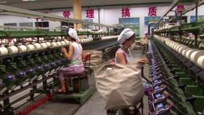Usine de coton