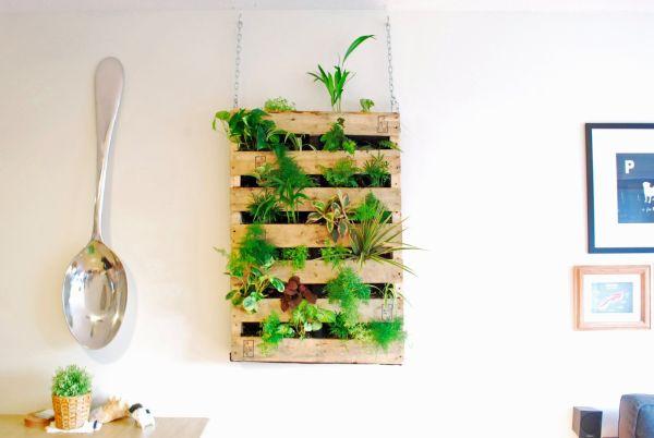 DIY Pallet Indoor Living Wall