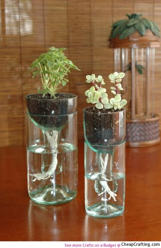 self-watering-recycled-wine-bottle