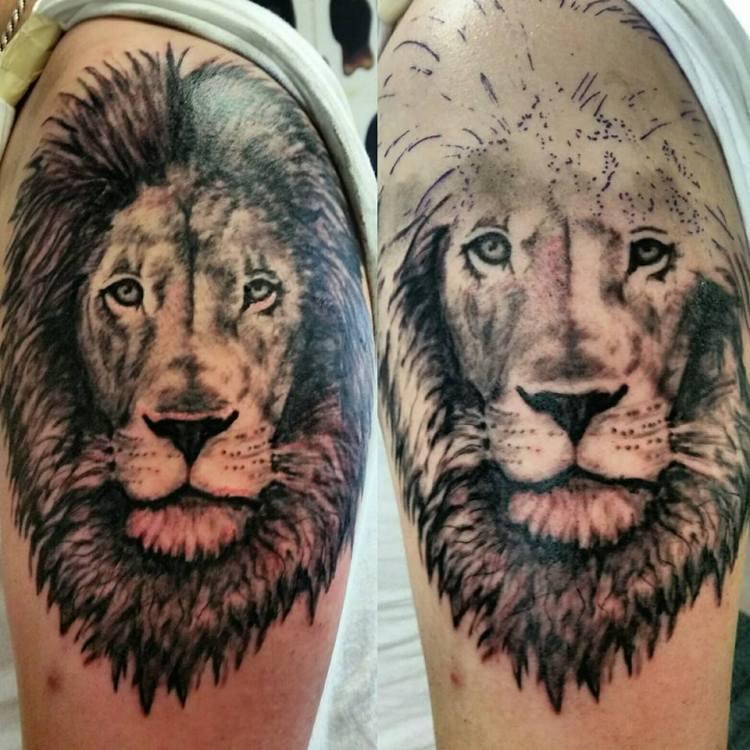 Skyler's Lion #liontattoos #tattoos #greywashtattoos