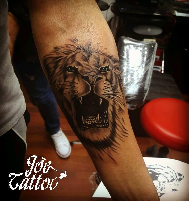 lion tattoo 2017