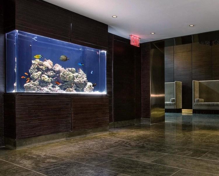Custom saltwater aquarium wrapped in wenge millwork on Rector Street NYC.