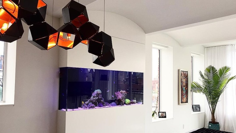 Recently installed reef aquarium in a Christopher Street Penthouse