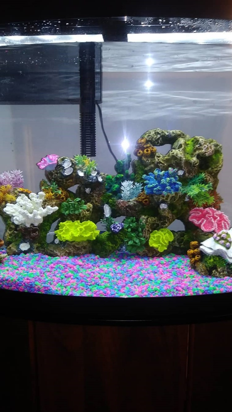 So pretty Aquarium