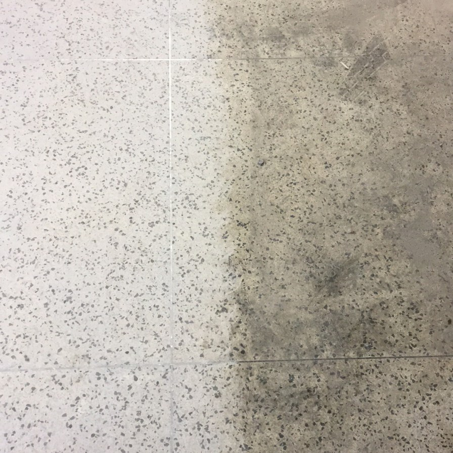 Terrazzo Restoration Of Virginia